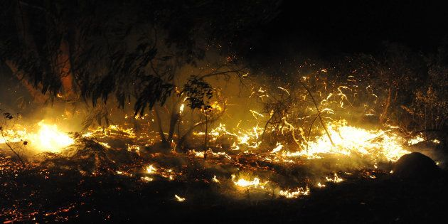 The fire line in the Eden district on Saturday extended over an area of roughly 100
