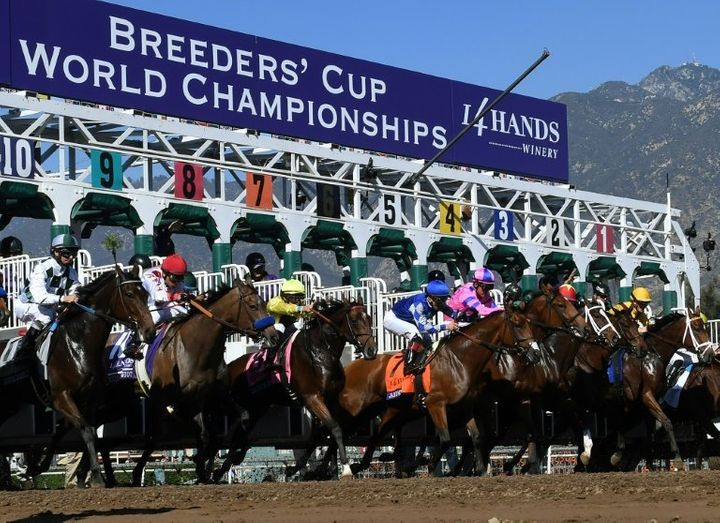 Horses race in the 2016 Breeders' Cup World Championships at the Santa Anita racetrack in Arcadia, California.