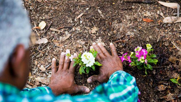 Εκδικητικός κηπουρός: Αφησε πίσω του εκρηκτικούς μηχανισμούς για να σκοτώσει τους εχθρούς