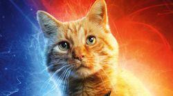 '어벤져스:엔드게임'에서는 고양이가 우주를 구할지도