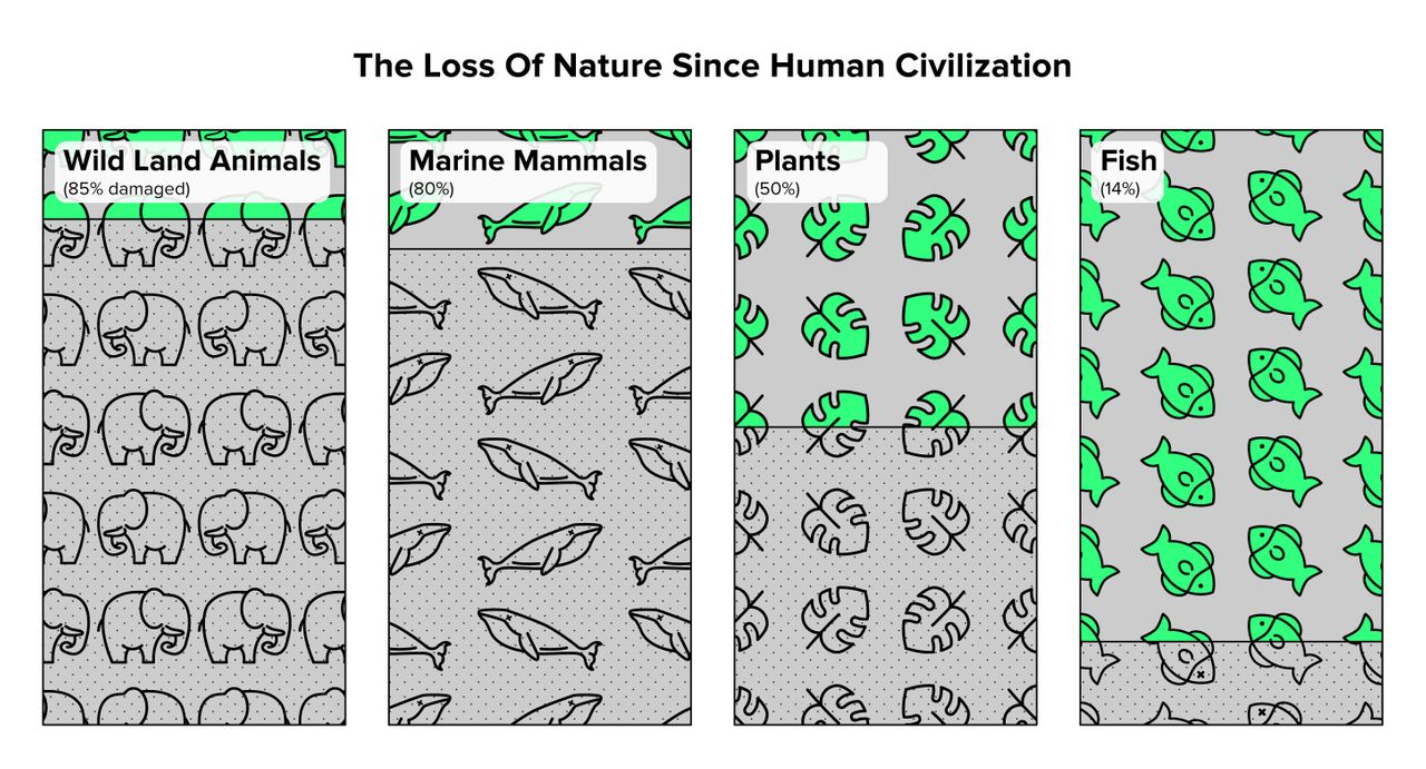 Humans have caused the loss of around 80 percent of wild land and marine mammals, and half of plants. Source: Yinon M. Bar-On, Rob Phillips, and Ron Milo, PNAS, 2018