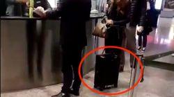 Parece una maleta más, pero lo que hace está creando furor en