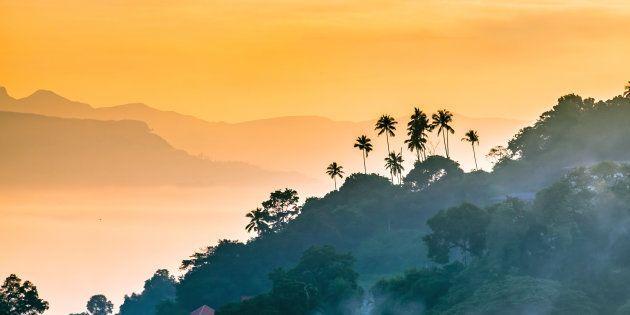 Por qué deberías viajar a Sri Lanka en tus próximas