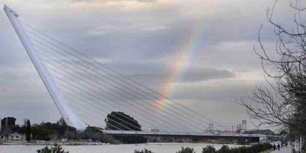 El puente del Alamillo, sobre el Guadalquivir, en un punto próximo a donde ha tenido lugar el