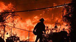 Ya son 50 los muertos en el incendio más mortal de