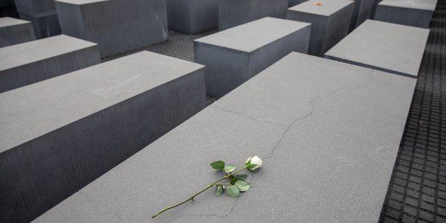 Una rosa blanca depositada sobre uno de los bloques de cemento que conforman el Monumento Conmemorativo...