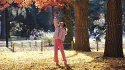 El invierno será cálido después del otoño más seco del siglo