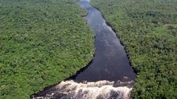 Un vertido de petróleo contamina la selva más grande del