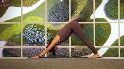 Cuatro posturas fáciles de yoga para aliviar la