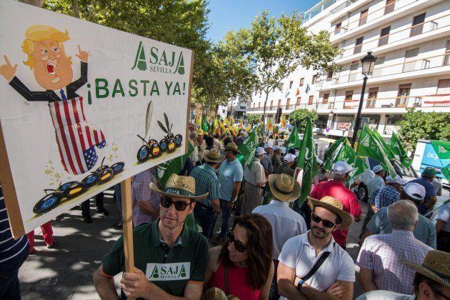 Agricultores, cooperativistas, entamadores y envasadores de aceituna de mesa, contra las medidas de