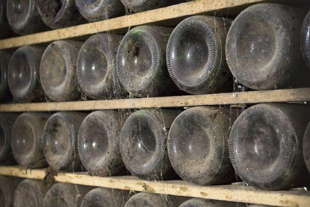 7 creencias muy extendidas sobre el vino que son