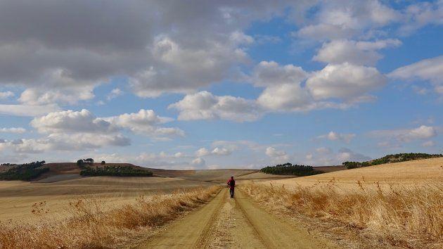 Camino de Levante hacia