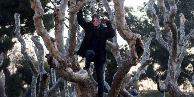Un hombre con una careta de Carles Puigdemont subido a un árbol. EFE/Enric