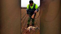 Detenido el cazador que grabó cómo daba una paliza mortal a un