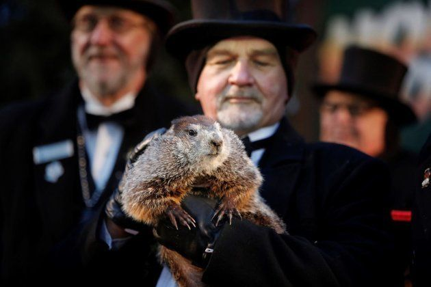 El Día de la Marmota: hay base científica, pero no