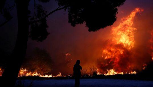 Las fotos del horror: los griegos luchan desesperadamente contra las