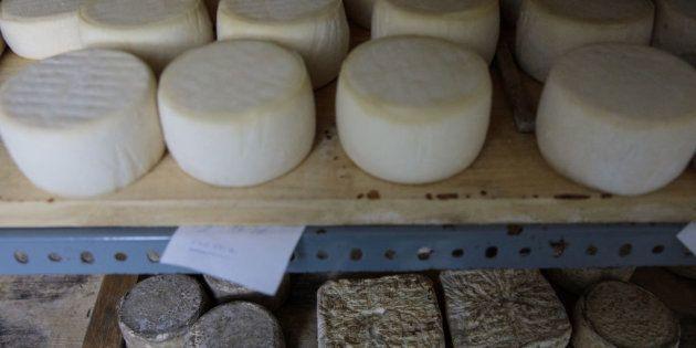 Retiran un lote de quesos de oveja tras un caso de meningitis en