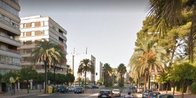 Diez jóvenes dan una paliza y roban a una chica de 24 años en Jerez
