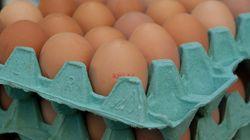 Una mala traducción provoca un lío de huevos en los Juegos de
