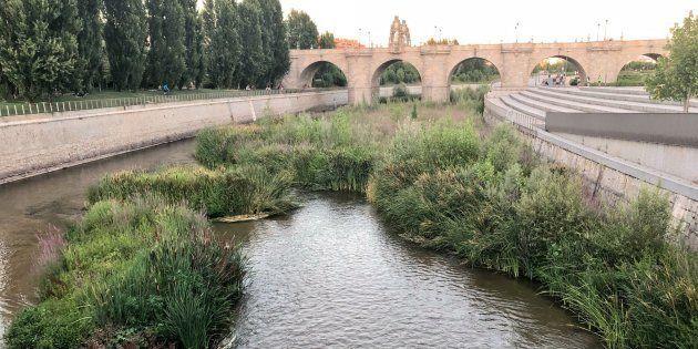Definitivo: El 7 de agosto se abre la presa y el Manzanares correrá libre y
