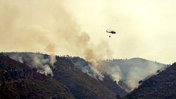 Un incendio de Llutxent (Valencia) calcina 1.500