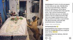 Una perra se pasa una noche entera velando a su dueña