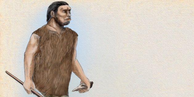 Un dibujo de un Homo