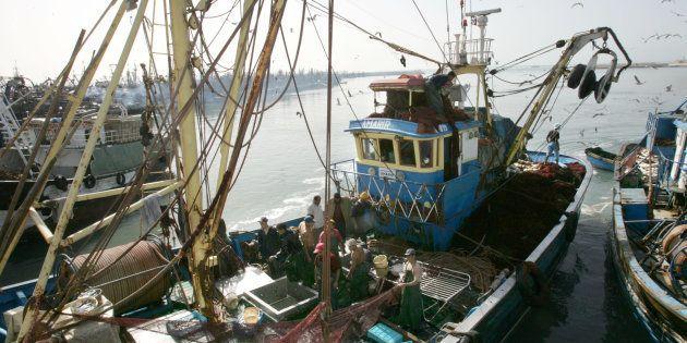 Pescadores en el puerto de El Aaiún, en el Sáhara