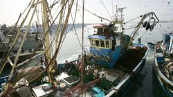 La justicia europea declara que el acuerdo pesquero con Marruecos no se aplica al Sáhara
