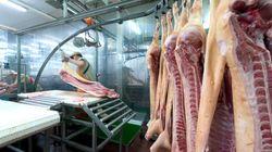 Sanidad confirma la entrada en España de 367 kilos de carne de vaca enferma