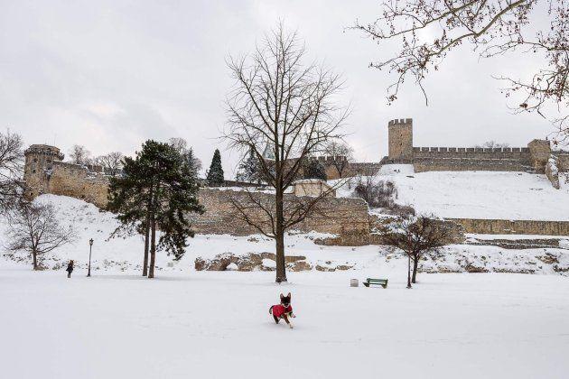 Fortaleza de Kalemegdan (Belgrado) este