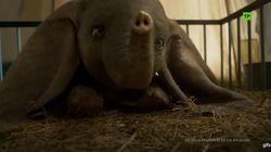 El tráiler de 'Dumbo' da pistas de lo que puedes esperar de la peli de Tim