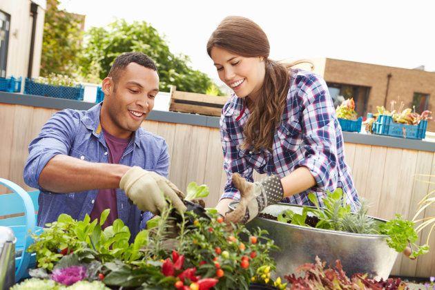 La jardinería también podría ayudar a personas con dolor