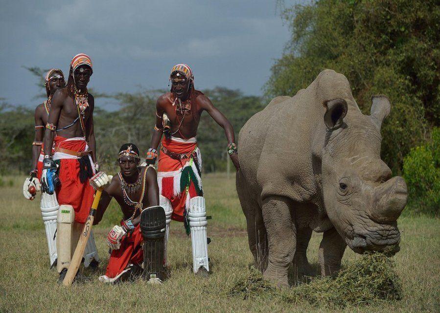 Miembros del equipo de cricket masai de los Warriors, famoso por usar el deporte para concienciar sobre...