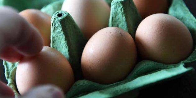 El extraño caso de un huevo con sorpresa que revoluciona
