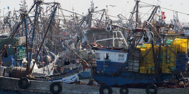 Barcos pesqueros marroquíes atracados en un puerto del Sáhara Occidental