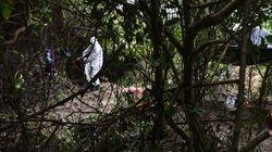 México halla 69 cadáveres en 49 fosas clandestinas en