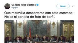 El golfista Fernández-Castaño la vuelve a liar: de usar la bandera independentista como felpudo a este tuit sobre el juicio d...