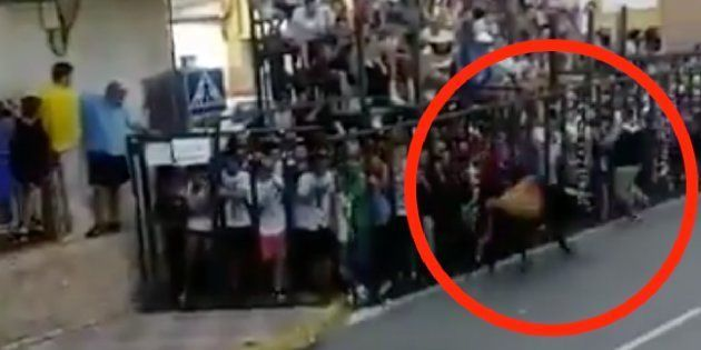 Muere un joven tras ser corneado en el encierro de Fernán Caballero (Ciudad