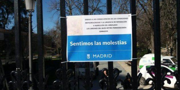 Muere un niño de 4 años en Madrid tras caerle un árbol del parque de El