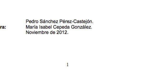 Sánchez publica en Internet el contenido íntegro de sus