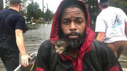 Survivor, el gatito que se aferró a la vida colgado al cuello de su