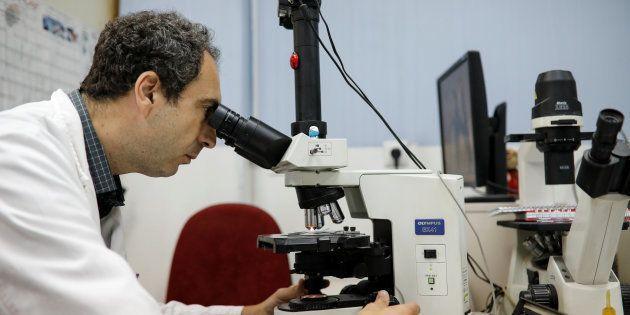 Un sanitario examina unas muestras en un laboratorio, en una imagen de