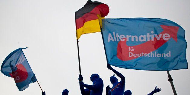 Simpatizantes de Alternativa para Alemania (AfD), en un acto contra la UE en la Puerta de Brandenburgo...