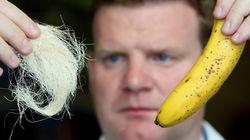 Piel de plátano, camisetas viejas y plástico reciclado para salvar el