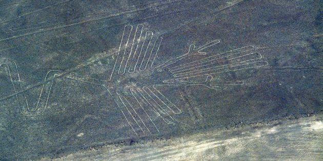 Imagen de un cóndor, en el parque de las líneas de Nasca, en