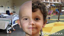 La Guardia Civil te necesita: busca un millón de retuits para concienciar sobre la donación de