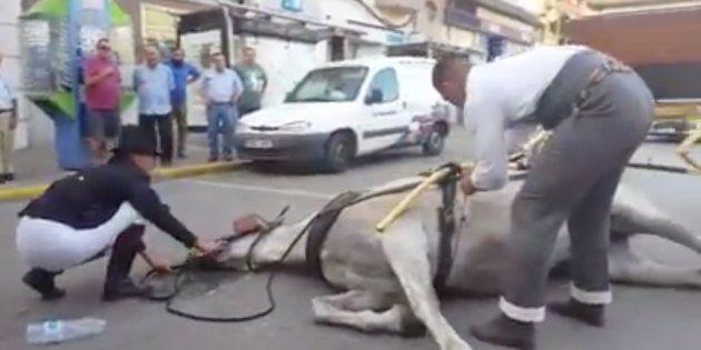 Captura del vídeo difundido en las redes sociales, obtenido por 'La Línea