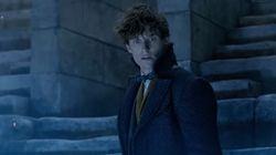Un personaje de 'Harry Potter' se cuela en el tráiler definitivo de 'Animales Fantásticos