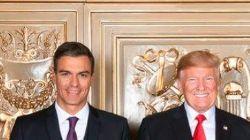 La indumentaria de Pedro Sánchez en esta foto con Trump genera múltiples